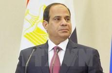 Tổng thống Ai Cập Abdel Fattah al-Sisi sẽ sớm cải tổ nội các