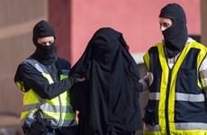 Cảnh sát Áo phát động chiến dịch chống khủng bố quy mô lớn
