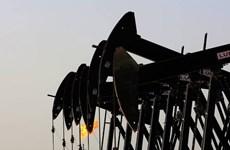 Giá dầu trên thị trường thế giới giảm do đồng USD mạnh lên