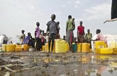 LHQ lập thêm khu định cư mới cứu trợ người tị nạn Nam Sudan