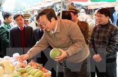 Giám sát thực hiện pháp luật an toàn thực phẩm tại Lạng Sơn