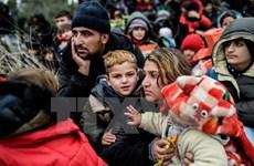 Tòa án Hiến pháp EU bác đơn kiện thỏa thuận di cư Brussels-Ankara