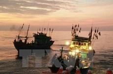 Nghệ An: Đứt dây tời khi đánh cá trên biển, 4 người thương vong
