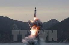 Hàn Quốc, Nhật Bản nhất trí hợp tác đối phó mối đe dọa Triều Tiên