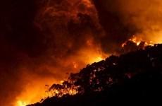 Trung Quốc: Cháy rừng bao trùm 5.000ha ở khu tự trị Nội Mông