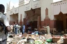 9 binh sỹ Cộng hòa Chad chết trong vụ tấn công của Boko Haram