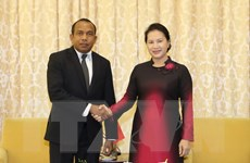 Thúc đẩy hợp tác Việt Nam-Timor Leste về an ninh năng lượng