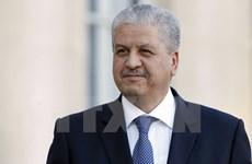 Algeria kêu gọi quốc tế có hành động chung để chống khủng bố