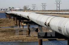 Trên 3,5 tỷ USD xây dựng đường ống dẫn dầu ở khu vực Đông Phi