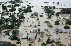 Mưa bão hoành hành và làm nhiều người chết tại Bangladesh, Brazil