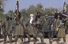 Đánh bom liên hoàn tại Cameroon làm hơn 30 người thương vong