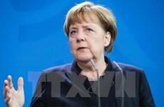 Thủ tướng Đức khằng định sẵn sàng ủng hộ cải cách Eurozone
