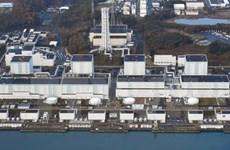 Nhật Bản xét xử cựu lãnh đạo TEPCO liên quan thảm họa hạt nhân