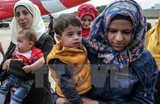 Thổ Nhĩ Kỳ cảnh báo trục xuất người tị nạn Syria phạm tội