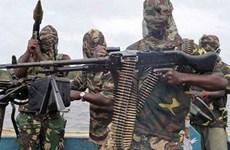 Nigeria: Đánh bom liều chết, ít nhất 17 người thiệt mạng