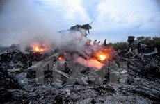 Khánh thành khu tưởng niệm các nạn nhân vụ MH17 tại Hà Lan