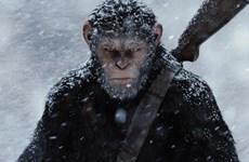 """""""Đại chiến hành tinh khỉ"""" thu gần 57 triệu USD ở tuần đầu ra mắt"""