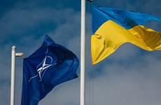 Ukraine và Gruzia hợp tác trong vấn đề gia nhập EU và NATO