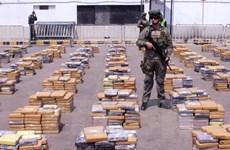Hải quan Bulgaria bắt giữ 5 tấn tiền chất ma túy tổng hợp