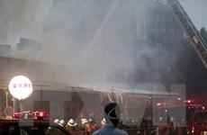 Nhật Bản: Cháy chợ cá nổi tiếng và lớn nhất thế giới Tsukiji