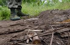 Ít nhất 12 người thiệt mạng trong vụ bạo động ở CHDC Congo