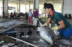 Các nền kinh tế APEC đẩy mạnh phát triển bền vững nghề cá