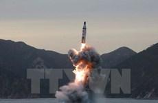 Mỹ: Triều Tiên thực hiện vụ phóng 3 tên lửa đạn đạo tầm ngắn