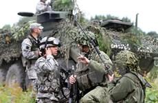 Các tiểu đoàn NATO tại các nước Đông Âu đi vào hoạt động