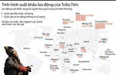 [Infographics] Tình hình xuất khẩu lao động của Triều Tiên