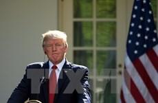 Căng thẳng ngoại giao vùng Vịnh: Mỹ đề cao tinh thần đoàn kết