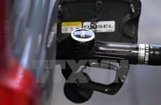 Giá dầu châu Á vẫn duy trì ở mức cao trong nhiều tháng