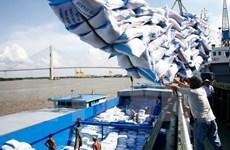Xuất khẩu gạo: Cần tránh việc phụ thuộc vào một thị trường