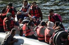Dòng người nhập cư bất hợp pháp vẫn đổ về Thổ Nhĩ Kỳ