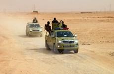 Lực lượng Iraq giành lại thị trấn Al-Qaim từ tay nhóm IS