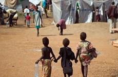 LHQ cảnh báo nguy cơ xảy ra nạn đói nghiêm trọng tại Nam Sudan