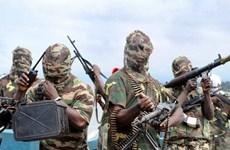 Nigeria phóng thích hơn 240 tay súng Boko Haram hoàn lương
