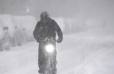 Bão tuyết hoành hành tại Mỹ, hơn 1.000 chuyến bay bị hủy
