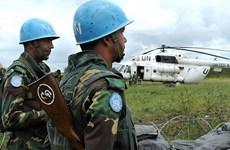 Số binh sỹ gìn giữ hòa bình LHQ thiệt mạng cao nhất trong 13 năm