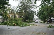 Philippines: Bão Sanba đổ bộ vào đảo Mindanao gây thương vong