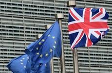 Brexit: Anh đưa đề xuất mới mang tính nhượng bộ về quyền công dân