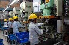 Nghỉ việc tập thể ở Lâm Đồng: Công nhân cần hiểu pháp luật lao động