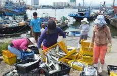 Kiên Giang không đăng kiểm tàu cá sơn màu sai quy định