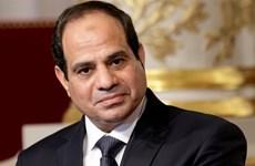 Nhiều nước chúc mừng Tổng thống Ai Cập tái đắc cử nhiệm kỳ 2