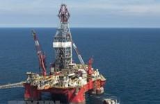 Giá dầu thế giới đảo chiều tăng trở lại trong phiên đầu tuần