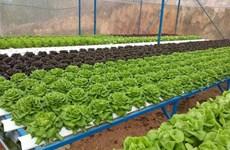 Long An và Thành phố Hồ Chí Minh đối thoại về tiêu thụ nông sản
