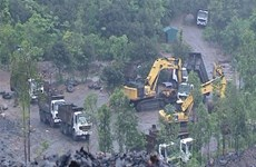 Hoàn nguyên môi trường khu vực dự án nghi khai thác than trái phép