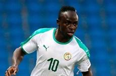 """World Cup 2018: Bảng H - Senegal nỗ lực tái lập """"kì tích"""""""