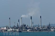 Giá dầu châu Á đi xuống do nhu cầu tại Trung Quốc suy giảm