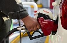 Thị trường dầu khởi sắc sau hội nghị thượng đỉnh Mỹ-Triều