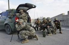 Bộ trưởng Quốc phòng Nhật Bản: Tập trận Mỹ-Hàn vô cùng quan trọng